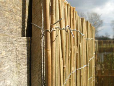 Cannicci paravento for Cannette di bambu prezzo
