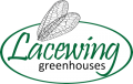 Serre Lacewing