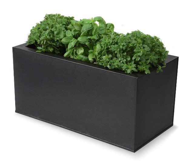 Recipiente da erba/piante per cucina - Nera
