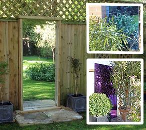 Specchi Da Giardino Per Personalizzare Il Tuo Giardino