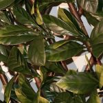 1 x 2m allungabile artificiale Laurel Leaf Screening Trellis - da Papillon™