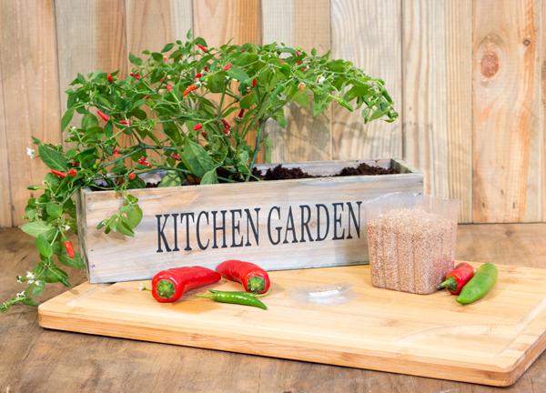 Crea il tuo giardino cucina 3 davanzale fioriere con i for Crea il tuo giardino